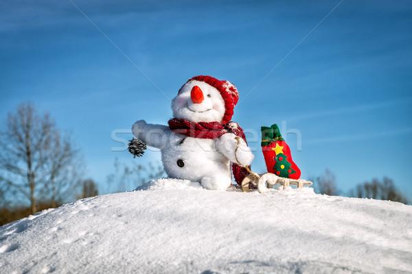 Gelukkig sneeuwpop hoed sneeuw achtergrond winter Stockfoto © Nickolya
