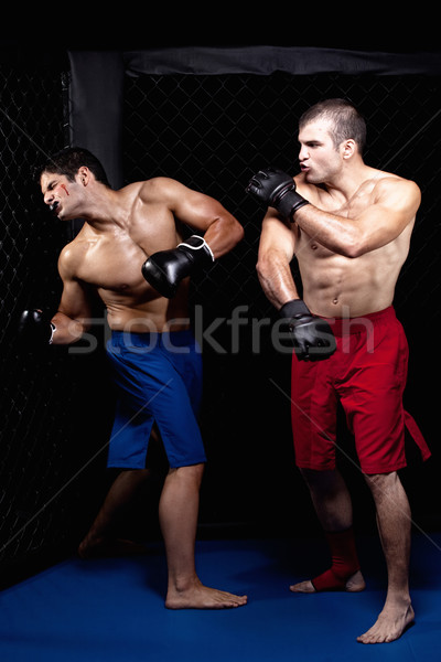 Stockfoto: Gemengd · sport · mannen · permanente · bokser · vechtsporten