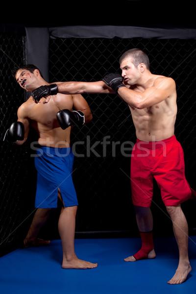 Vegyes sportok férfiak áll boxoló küzdősportok Stock fotó © nickp37