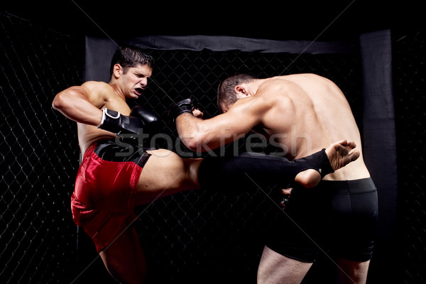 Misto esportes músculo lutar masculino Foto stock © nickp37