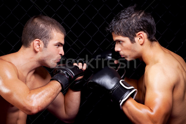 MMA Stock photo © nickp37