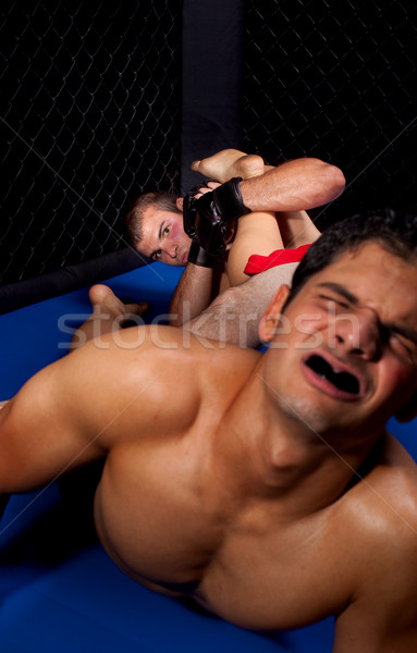 Karışık spor erkekler ağrı boksör dövüş sanatları Stok fotoğraf © nickp37