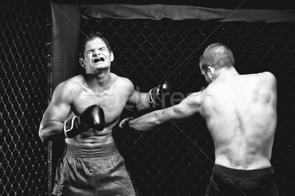 Stockfoto: Gemengd · vechten · sport · spier · zwarte · strijd