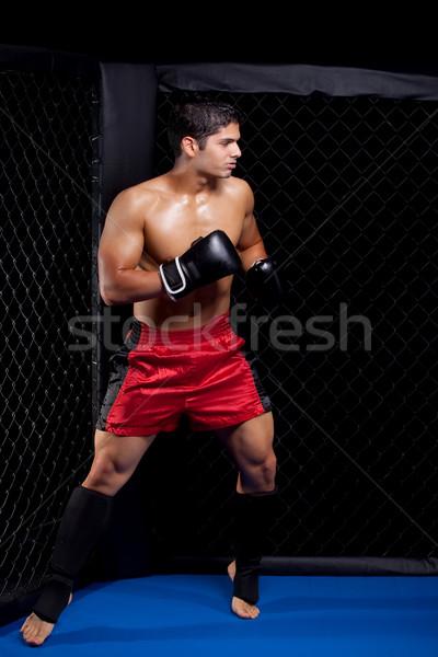 Foto stock: Misto · lutar · artista · esportes · músculo · boxeador