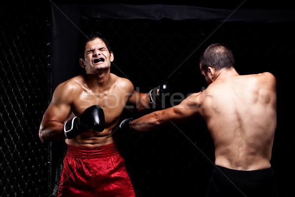 смешанный спортивных мышцы борьбе мужчины Сток-фото © nickp37