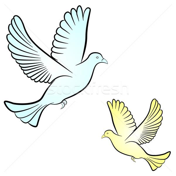 ストックフォト: ベクトル · 鳩 · 白 · 空 · 自然 · 背景