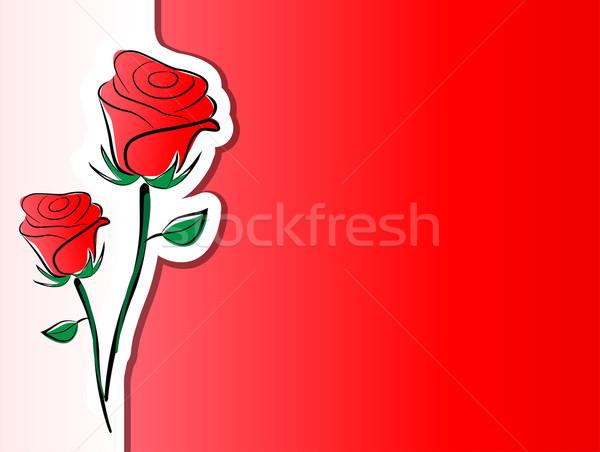 Vector roses background Stock photo © nickylarson974