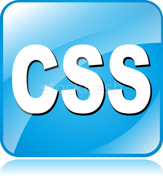 css icon Stock photo © nickylarson974