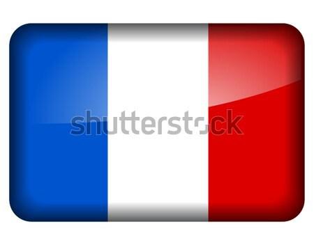 french flag icon Stock photo © nickylarson974