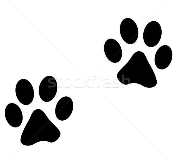 Vector animales huellas animales blanco perro Foto stock © nickylarson974