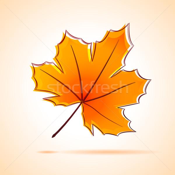 Akçaağaç yaprağı örnek dizayn turuncu çizim doğa Stok fotoğraf © nickylarson974