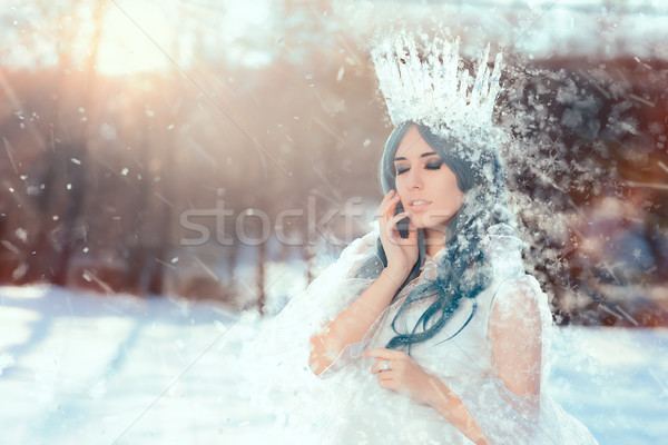 Snow Queen in Winter Fantasy Landscape  Stock photo © NicoletaIonescu