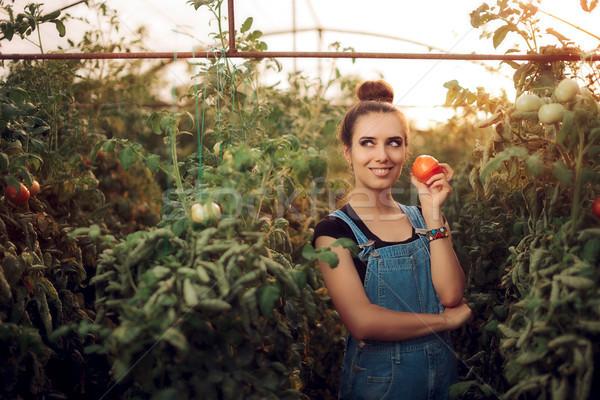 Happy Farm Girl Holding a Tomato inside a Greenhouse Stock photo © NicoletaIonescu
