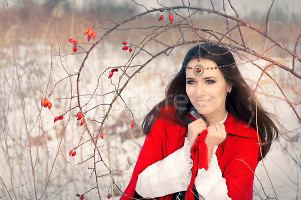 Winter Princess with Rosehip Branch Stock photo © NicoletaIonescu