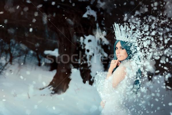 Hó királynő tél fantázia tájkép gyönyörű Stock fotó © NicoletaIonescu