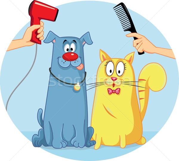 Cat and Dog at Pet Salon Vector Cartoon Stock photo © NicoletaIonescu
