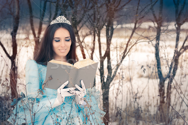 Beautiful Snow Queen Reading a Book Stock photo © NicoletaIonescu