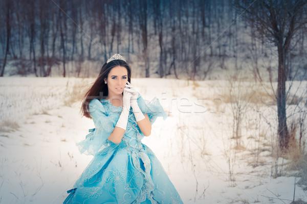 Belo neve rainha inverno decoração retrato Foto stock © NicoletaIonescu