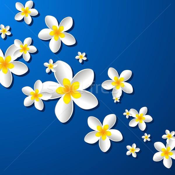 цветы Creative аннотация декоративный цветок природы Сток-фото © nicousnake