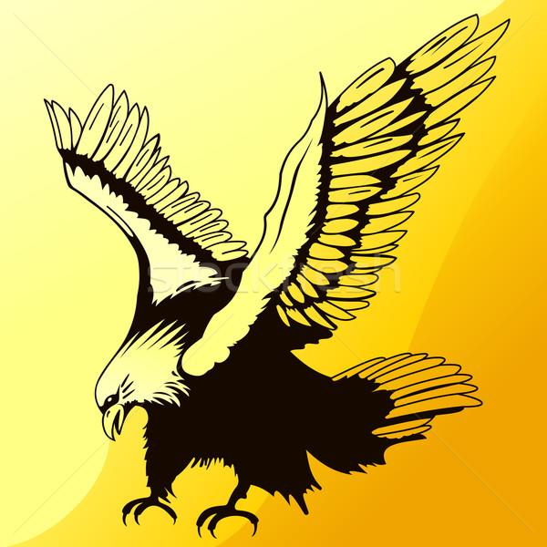 Foto stock: Aterrizaje · águila · silueta · ilustración · naranja