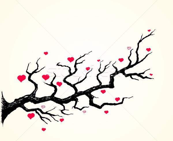 Flor de cereja corações ilustração rosa em torno de preto Foto stock © nikdoorg