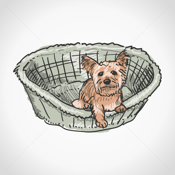 Yorkshire Terrier in Basket Stock photo © nikdoorg