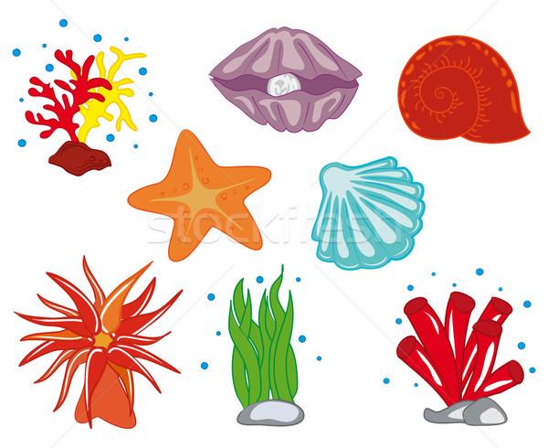 Tropical oceano flora profundo subaquático colorido Foto stock © nikdoorg