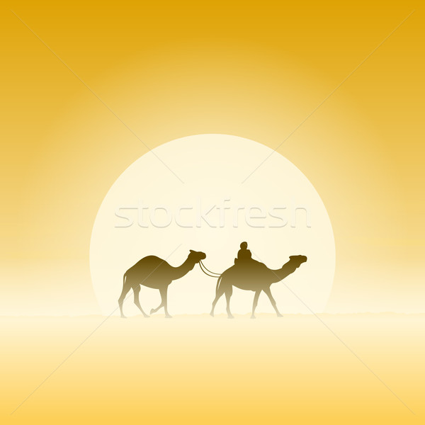 Two Camels and Sun Stock photo © nikdoorg
