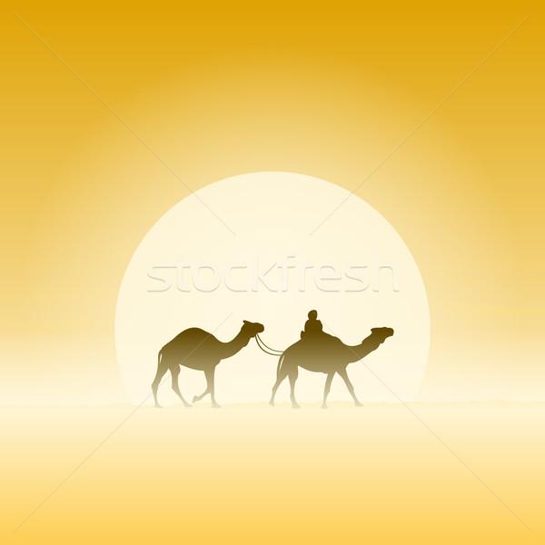 Iki deve güneş seyahat macera geleneksel Stok fotoğraf © nikdoorg