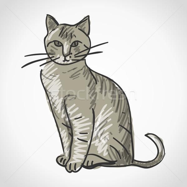 Gato ilustração vetor gato doméstico isolado Foto stock © nikdoorg