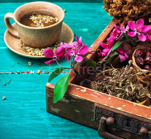 tea on medicinal herbs Stock photo © nikolaydonetsk