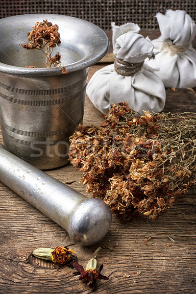 трава железной сушат сельский медицинской Сток-фото © nikolaydonetsk