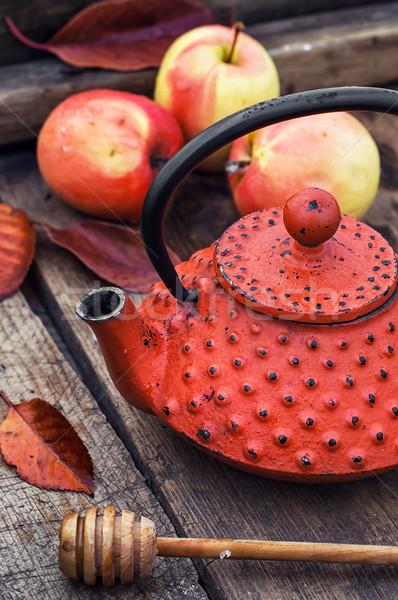 Elegante maçã vermelho retro Foto stock © nikolaydonetsk
