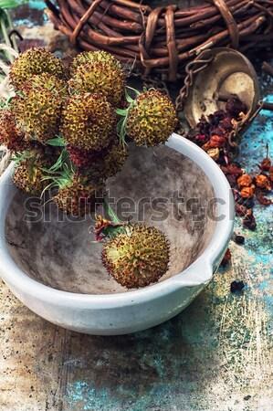 Conjunto estância termal mineral perfume sal outro Foto stock © nikolaydonetsk