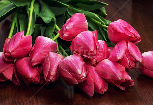 blossoming tulips Stock photo © nikolaydonetsk