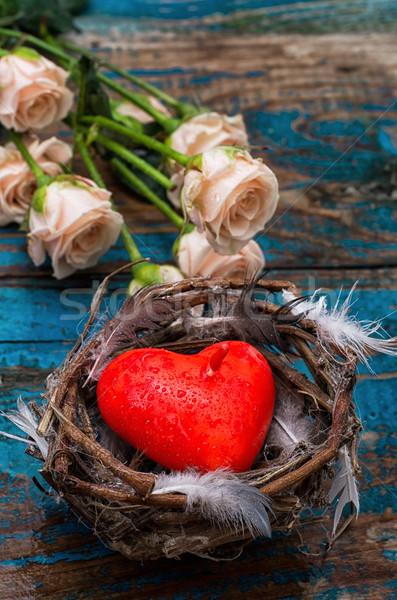 バレンタインデー 春 鳥の巣 シンボル 花 結婚式 ストックフォト © nikolaydonetsk