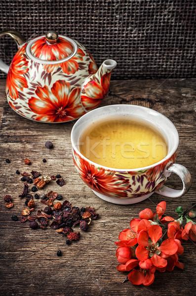 Porcelana kubek pachnący herbaty retro Zdjęcia stock © nikolaydonetsk
