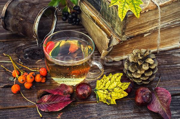 Sonbahar çay parti şeffaf fincan bitkisel çaylar Stok fotoğraf © nikolaydonetsk