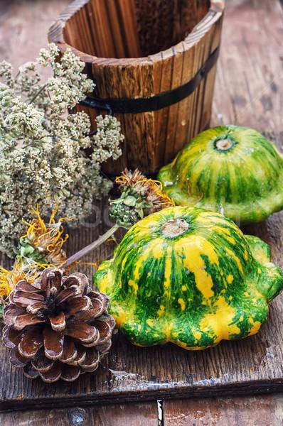 Zbiorów miąższ jesienią rustykalny stylu ogród Zdjęcia stock © nikolaydonetsk