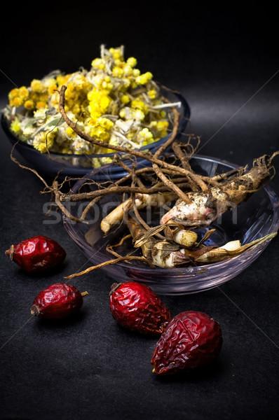 rose hips and folk medicine Stock photo © nikolaydonetsk