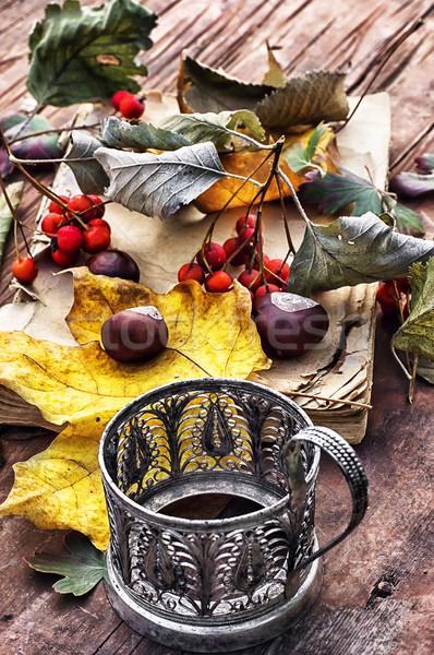 autumn still life Stock photo © nikolaydonetsk