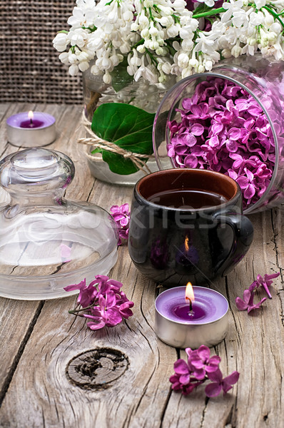 Pachnący herbaty oddziału liliowy wiosenny kwiat palenie Zdjęcia stock © nikolaydonetsk