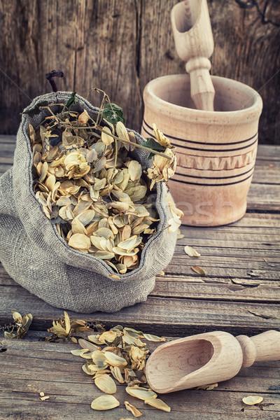 урожай хмель Cut сумку сушат деревенский Сток-фото © nikolaydonetsk
