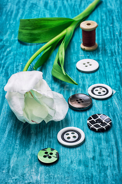 Stock photo: one white tulip and buttons with threads