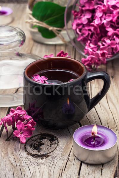 香ばしい 茶 支店 ライラック 春の花 燃焼 ストックフォト © nikolaydonetsk