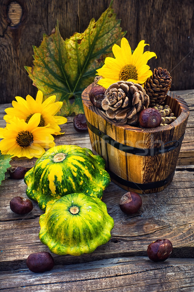 Outono natureza morta abóbora colheita madeira Foto stock © nikolaydonetsk