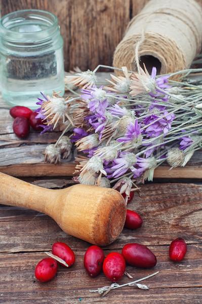 Ягоды кустарник чаши семян деревянный стол Сток-фото © nikolaydonetsk