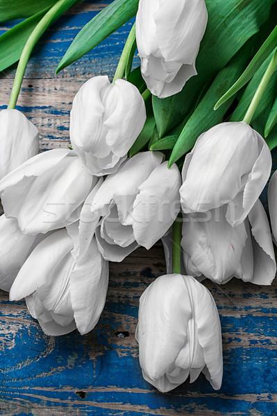 Beyaz lale taze eski ahşap Paskalya çiçek Stok fotoğraf © nikolaydonetsk