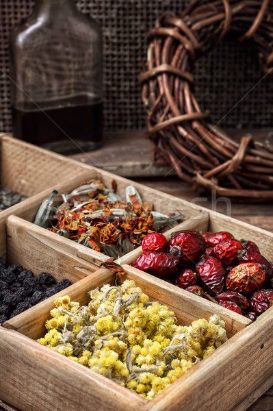 collected and dried herbs doctor Stock photo © nikolaydonetsk