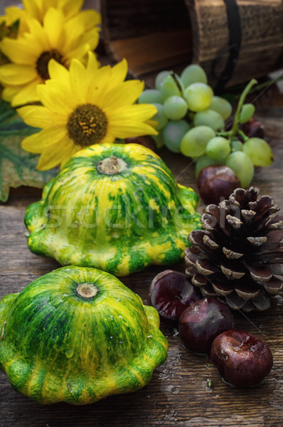 Récolte squash automne rustique style jardin Photo stock © nikolaydonetsk